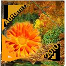 Autumn 2010 Award